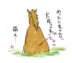 馬徒然 座り